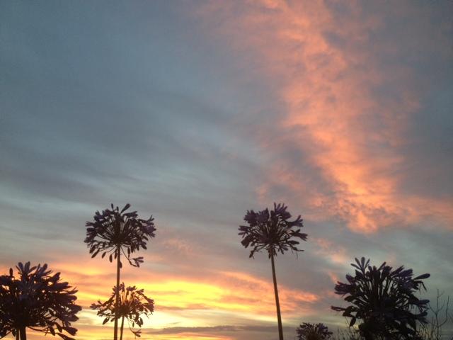 banks peninsula new zealand sunset