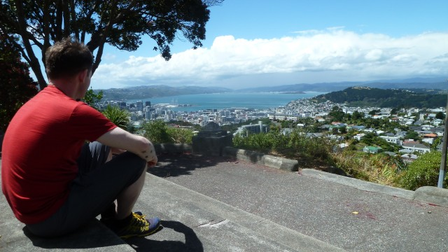 tourist looking out over wellington